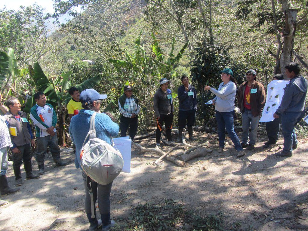 ECA El Milagro - Responsable de MIP reforzando los trabajos grupales de los participantes