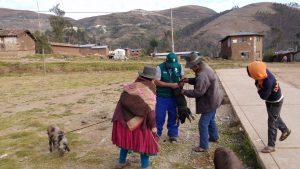 Huancarama_vacunacion3