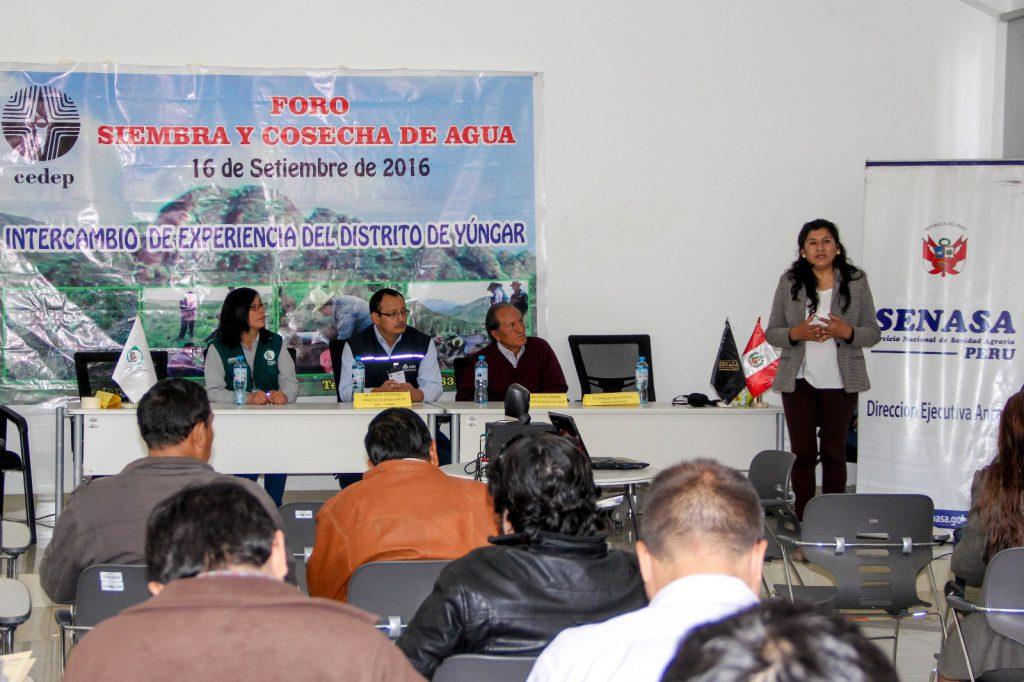 Huaraz1