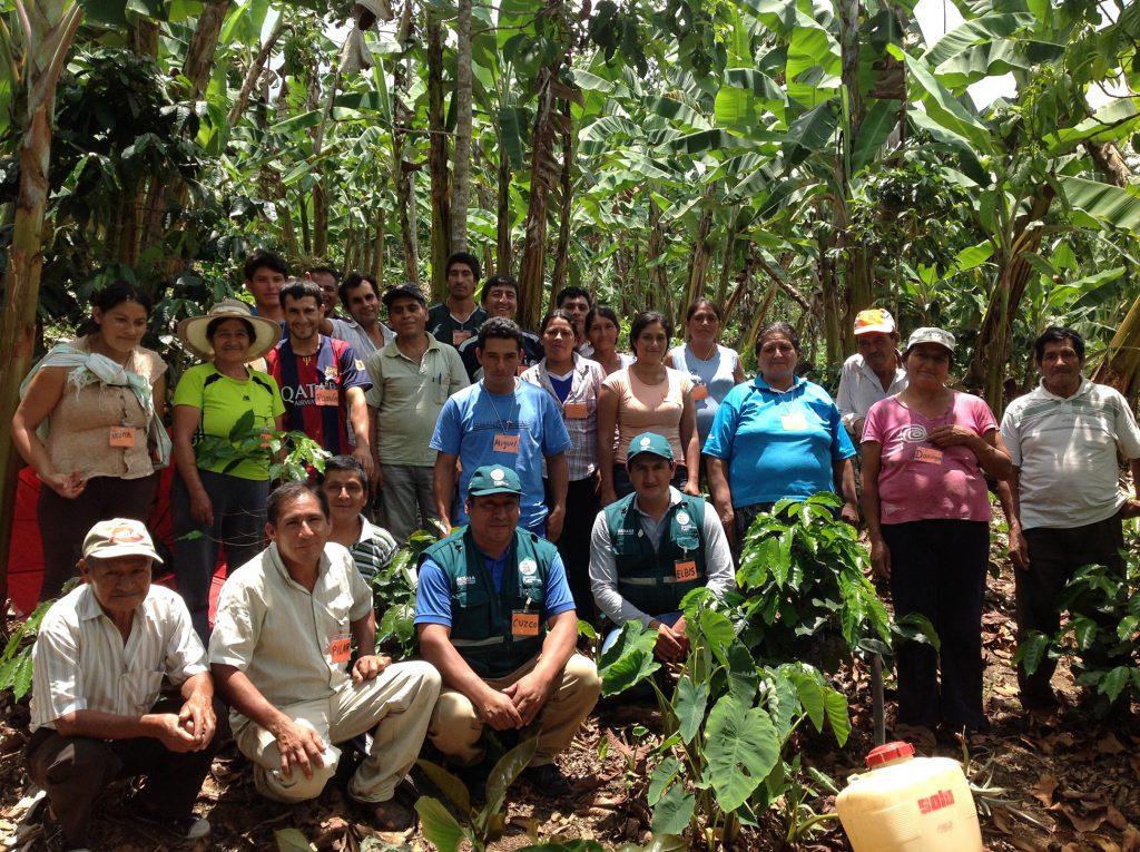 Escuela de Campo de Agricultores del Senasa en Amazonas
