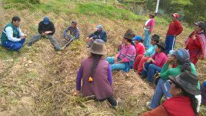 Senasa desarrolla Escuelas de Campo de Agricultores en Apurímac