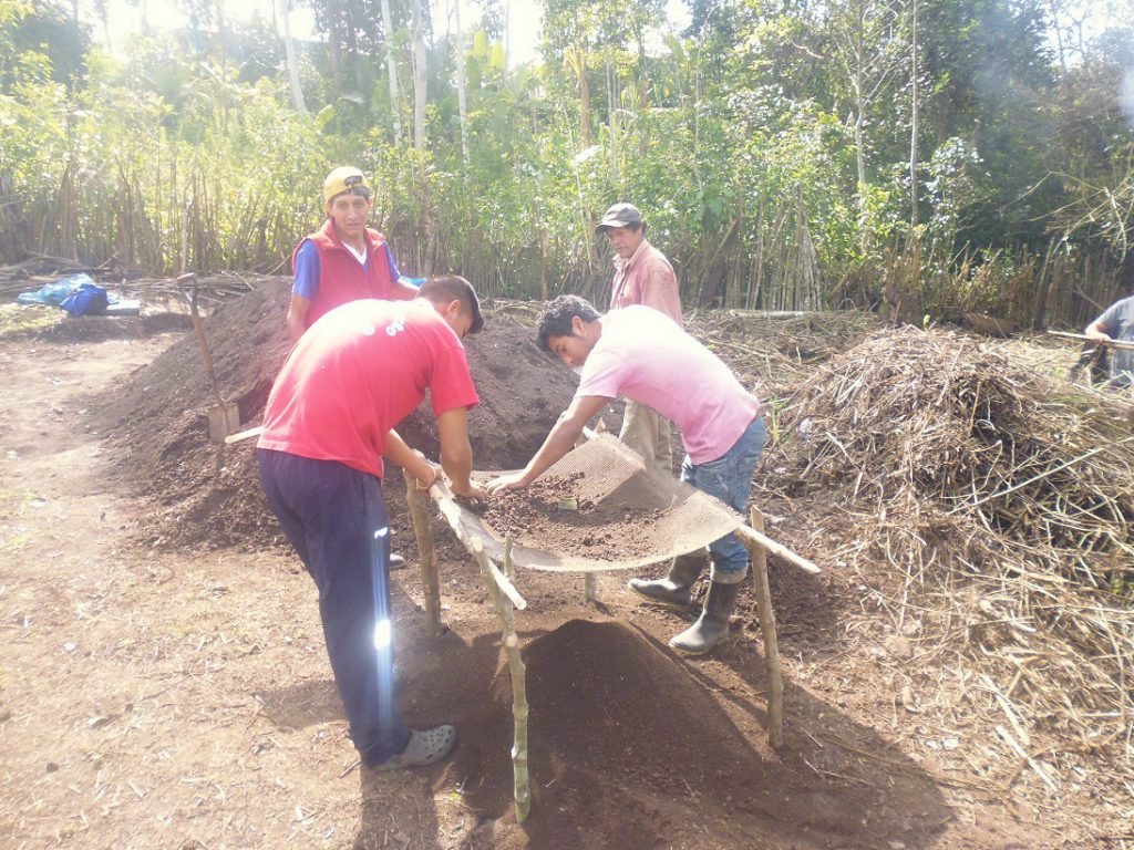 Senasa - Sarandeo de tierra para cama germinadora