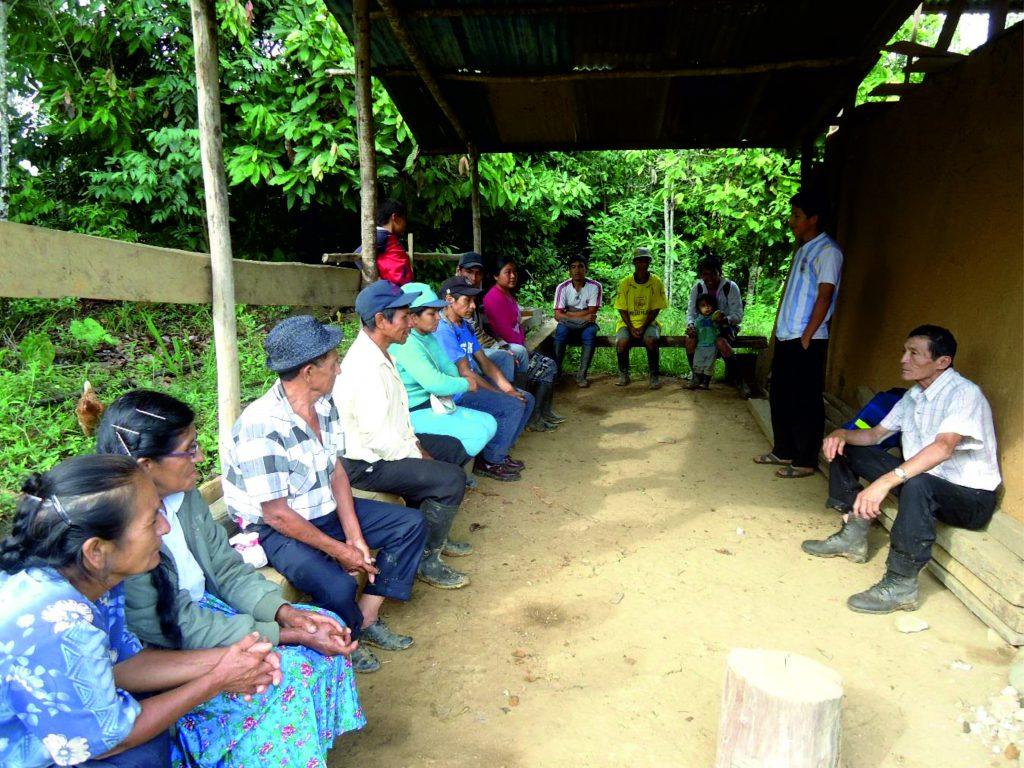 Escuelas de Campo graduaron a 150 productores de café en Huánuco - Senasa