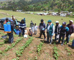 Senasa - Control biológico busca reducir uso de plaguicidas en cultivos