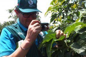 Senasa - Prácticas de campo de nueva certificación fitosanitaria