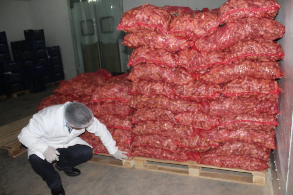 Senasa certifica más de 200 toneladas de kion con destino a mercados internacionales