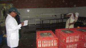 Senasa - Inspección de locales de faenamiento de aves en Yarinacocha