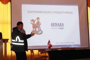 Senasa - Acciones para la prevención de la sanidad ganadera en Puno