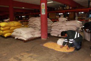 Senasa - Inspección de productos de origen vegetal comisados por Aduanas en Puno
