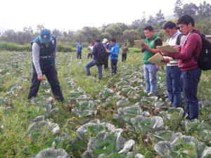 Senasa realiza taller sobre Manejo Integrado de Plagas en Cajamarca