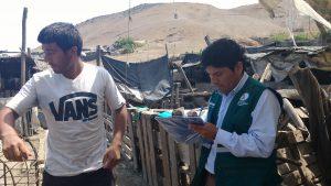 Senasa realizará campaña sanitaria gratuita de vacunación en Huaral