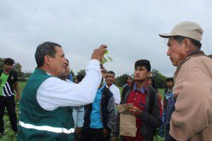 Senasa - Agricultores de Motupe aprenden a reconocer plagas en los cultivos de menestras