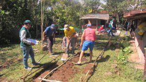 Senasa - Escuela de Campo de Agricultores - MIP Cafe