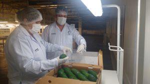 Senasa - Monitoreo de residuos químicos en alimentos agropecuarios
