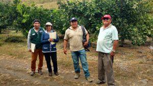 Senasa certifica Fundo Verde y fomenta producción libre de plaguicidas