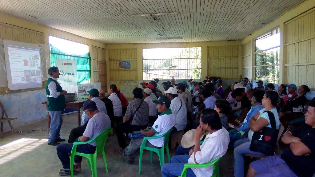 Productores de Ucayali capacitados en normatividad y uso seguro y responsable de plaguicidas 3