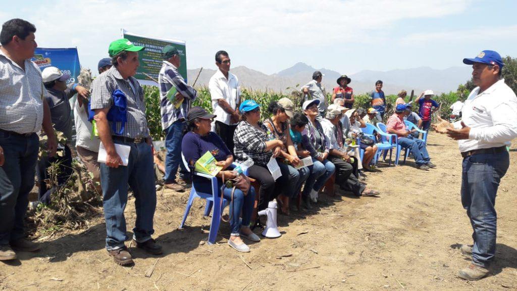 Senasa - Capacitacion Plaguicidas en Nueva Arica