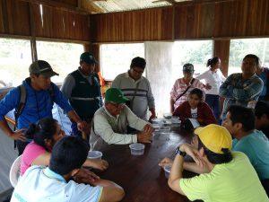 Senasa - Productores de Ucayali comprueban buenos resultados del control biológico frente a plagas forestales