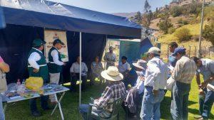 Senasa - Taller de campo en Torata recibe a 135 productores agropecuarios